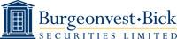 Burgeonvest Bick Financial Services